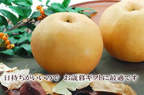 新興梨の写真