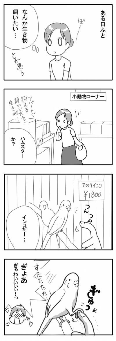 サザナミ漫画