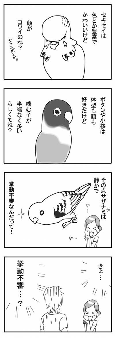 サザナミ漫画3