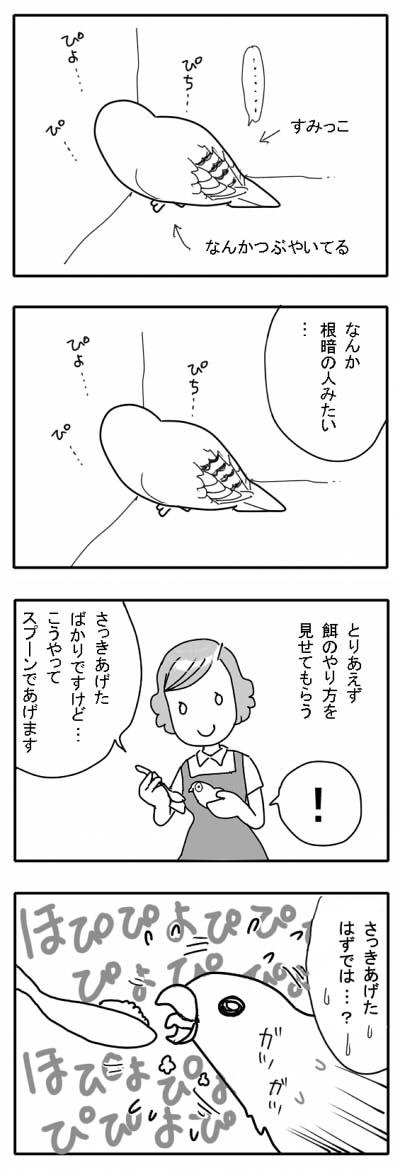 サザナミ漫画4