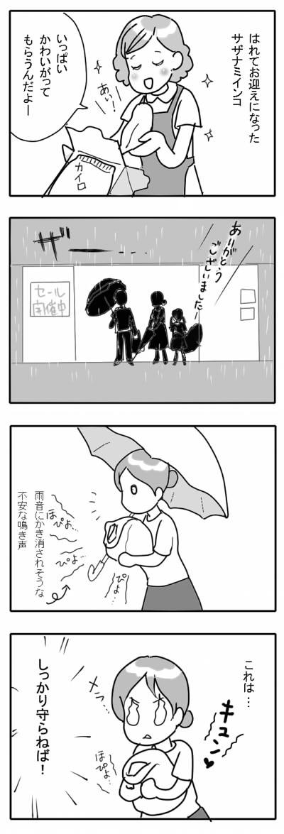 サザナミ漫画5