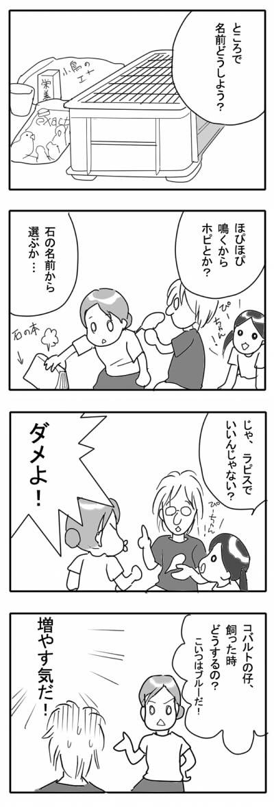 サザナミ漫画6