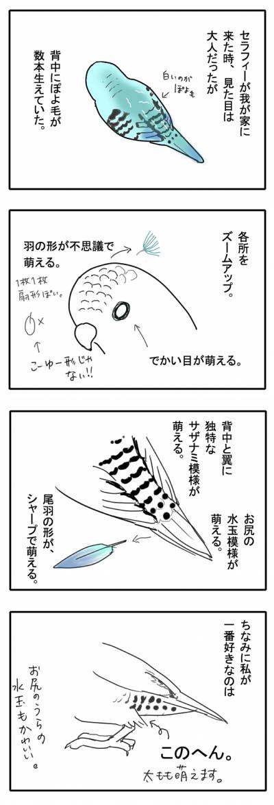サザナミ漫画8