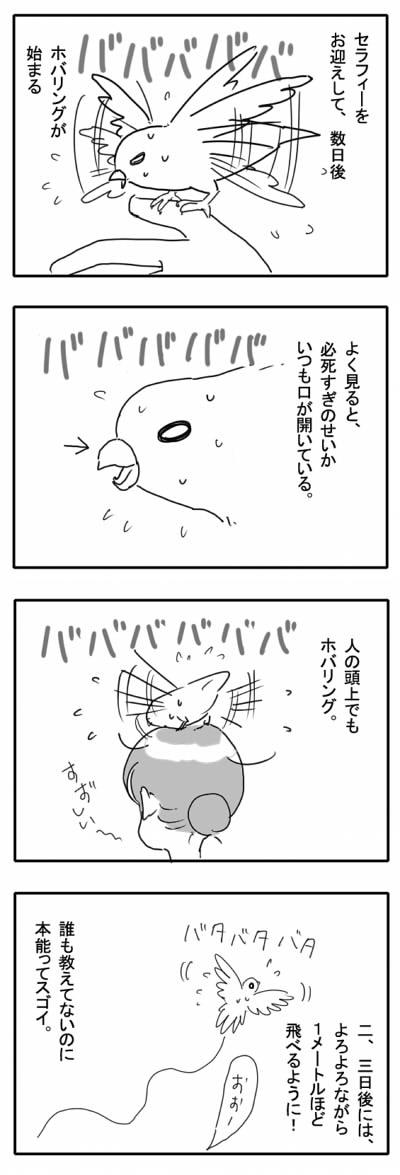 サザナミ漫画10
