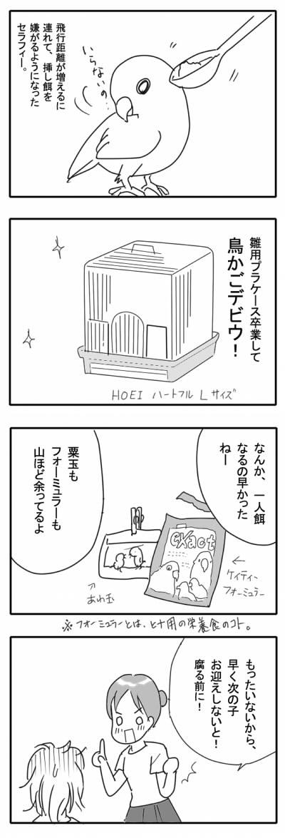 サザナミ漫画11