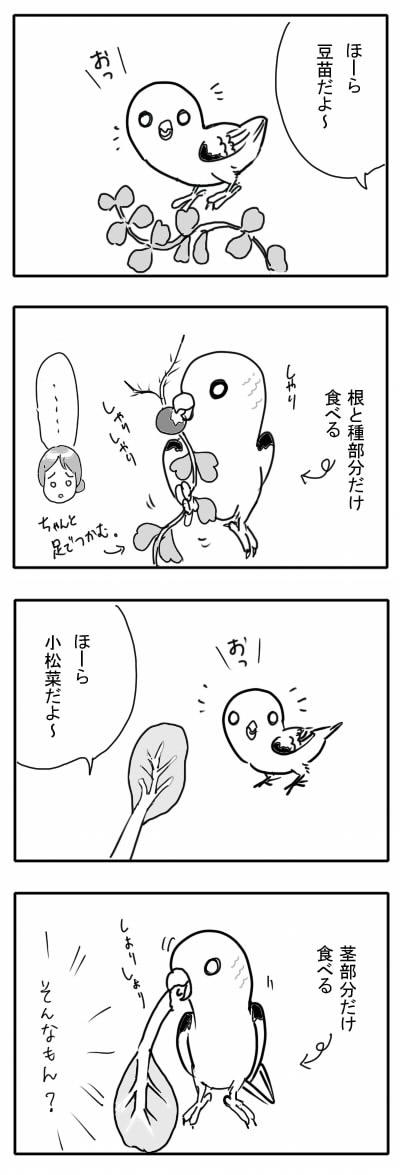 サザナミ漫画14