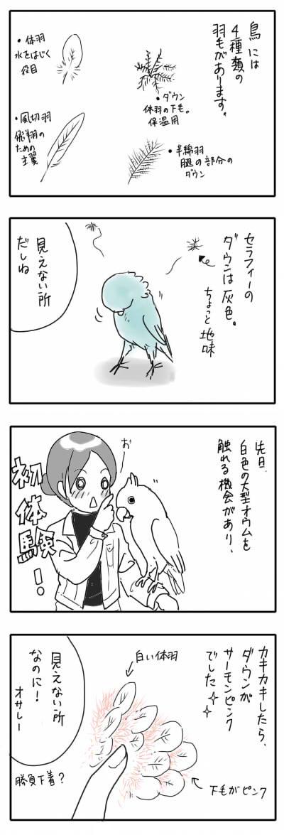 サザナミ漫画21