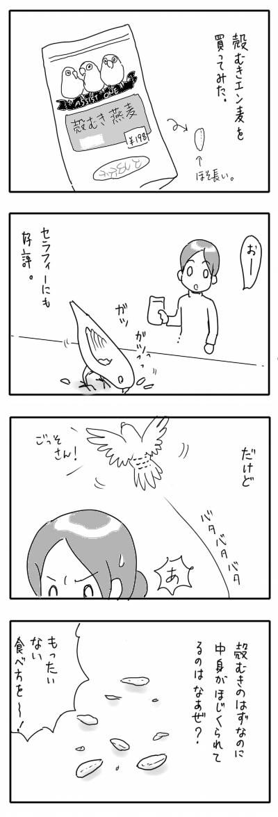 サザナミ漫画23