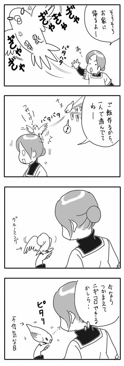 サザナミ漫画29