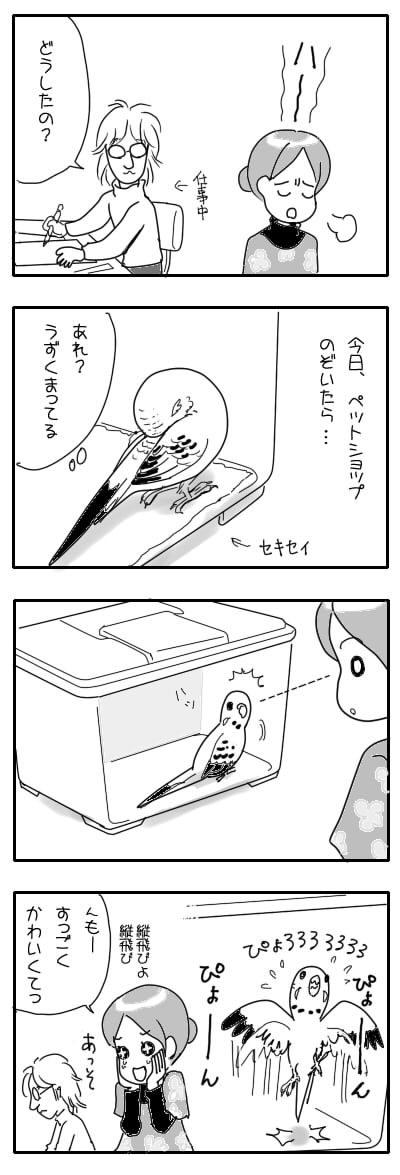 サザナミ漫画34