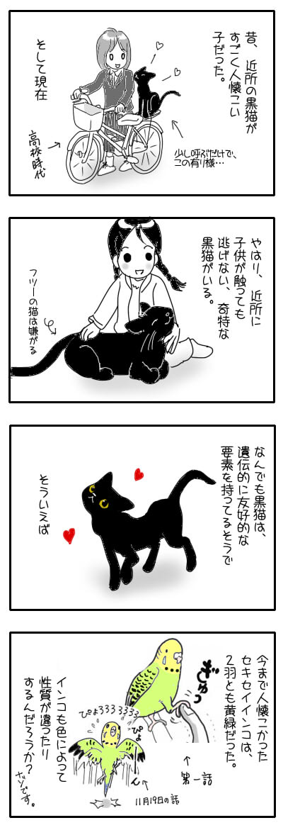 サザナミ漫画37