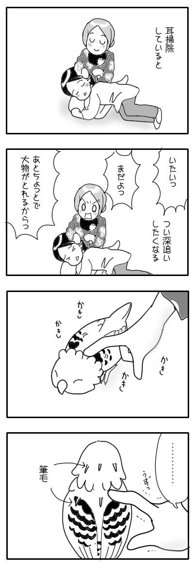 サザナミ漫画38-1