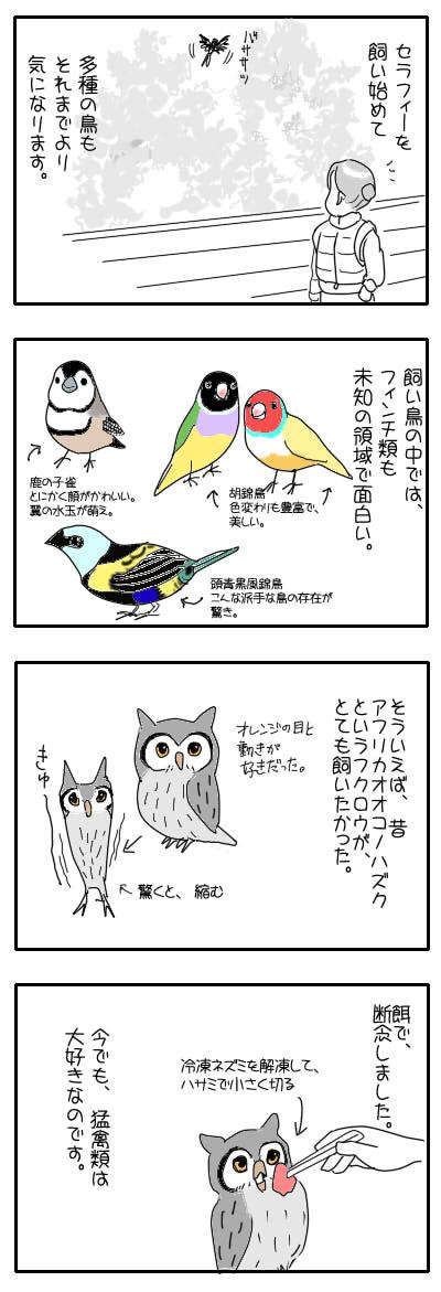 サザナミ漫画39