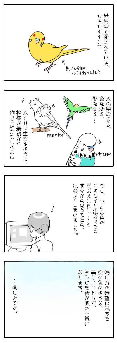 サザナミ漫画40