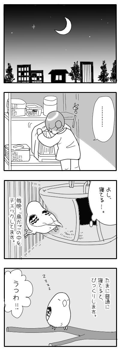 サザナミ漫画43