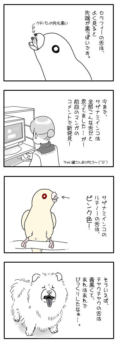 サザナミ漫画45
