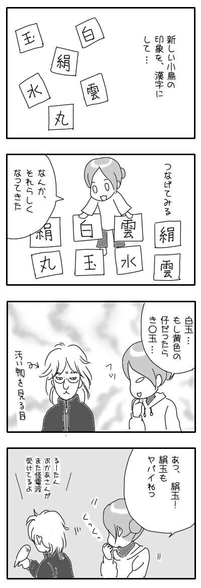 サザナミ漫画47
