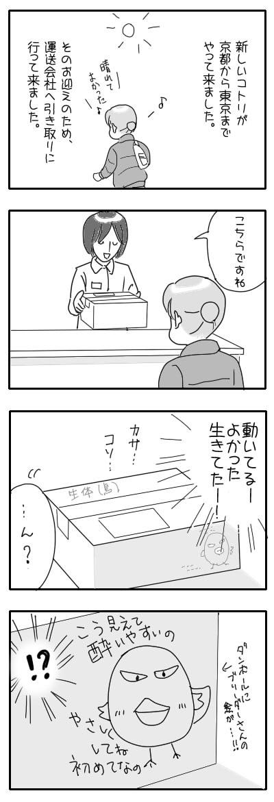 サザナミ漫画49