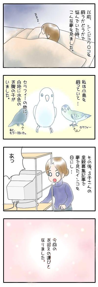 サザナミ漫画50