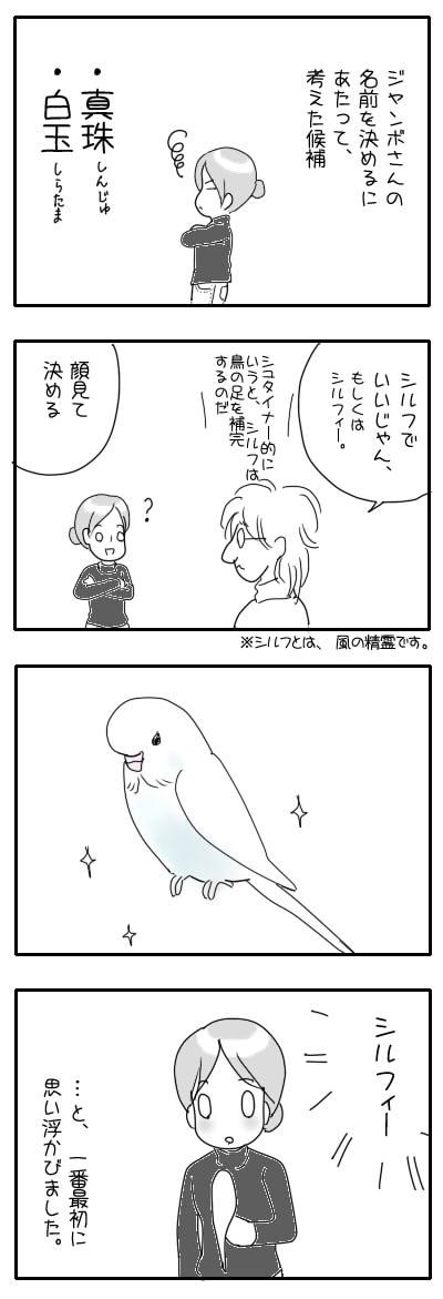 サザナミ漫画51