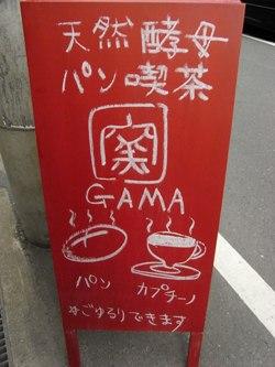 gama1.jpg