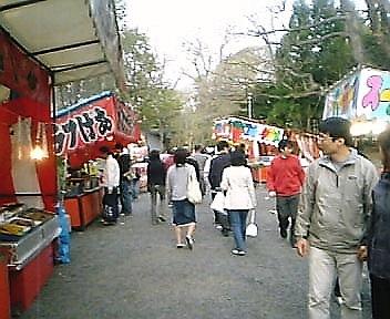 hanami2.jpg