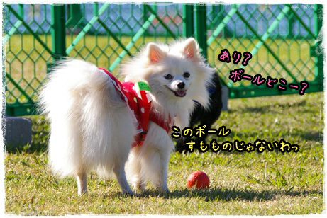 IMGP0333_edited-1.jpg