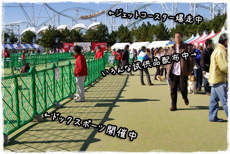 IMGP0363_edited-1.jpg