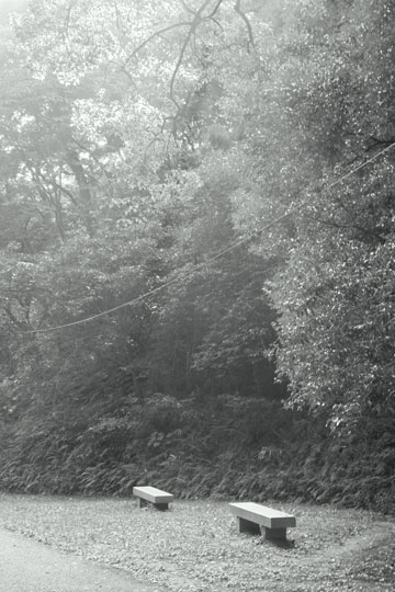 b-re-IMG_1897.jpg