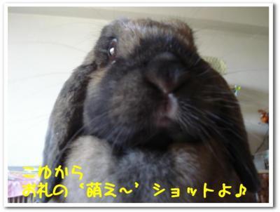 q__YqJbK.jpg