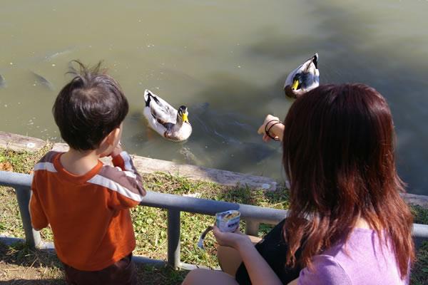 公園091212