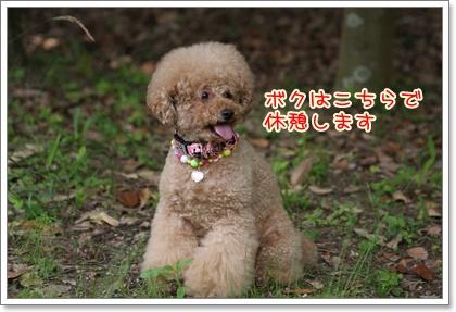 10_20090525204646.jpg