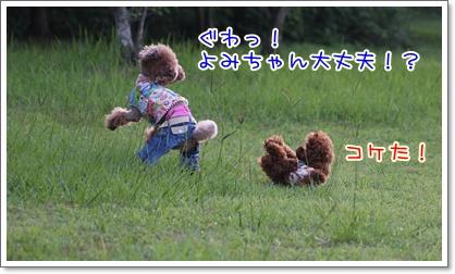 10_20090629230325.jpg