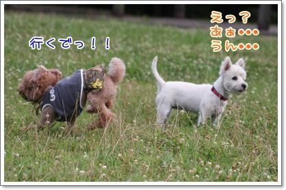 10_20090712223739.jpg