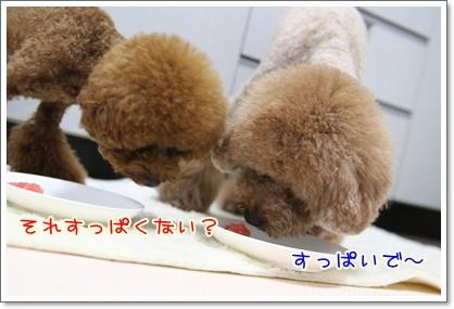 12_20090720013702.jpg