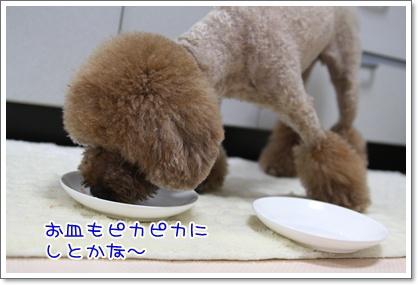 13_20090720013703.jpg