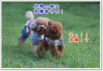16_20090628232533.jpg