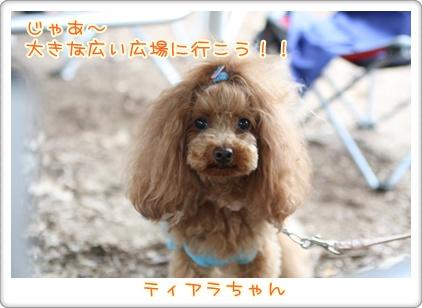 16_20090707203429.jpg