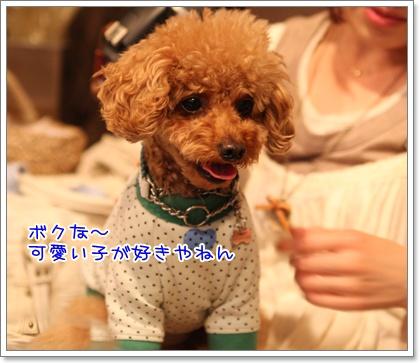19_20090429140401.jpg