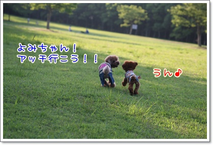 1_20090629225131.jpg