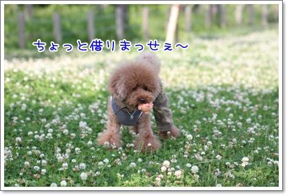 20_20090609001342.jpg