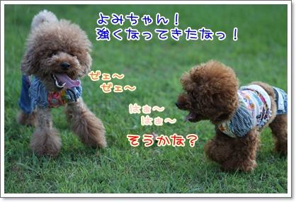 20_20090628233258.jpg