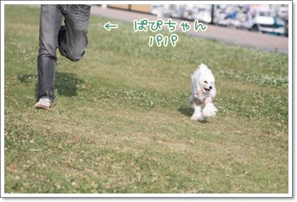 21_20090609001343.jpg