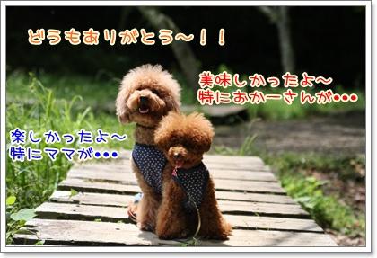 22_20090601210042.jpg