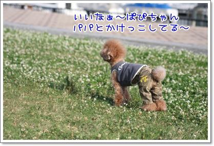 22_20090609002206.jpg