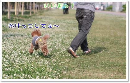 23_20090609002207.jpg