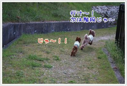 24_20090419001254.jpg