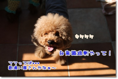25_20090415195354.jpg