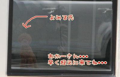 2_20090419212358.jpg