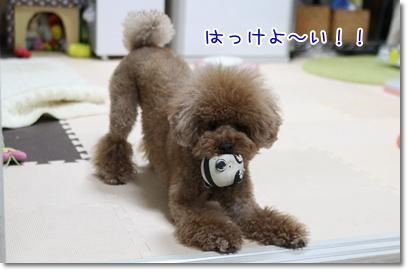 2_20090613005802.jpg